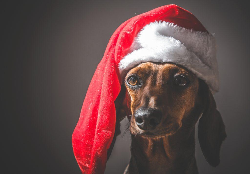 Frohe Weihnachte